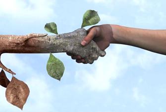 insana ve doğaya saygılıyız